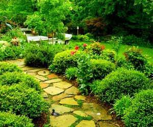 Charming Lawn Escape game