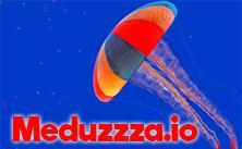 Meduzzza.Io game