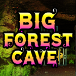 Big Forest Cave Escape game