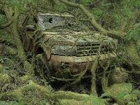 Abandoned Jungle Escape