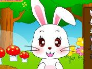 Cute Bunny game