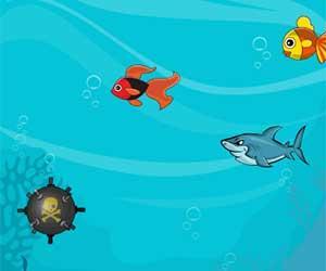 play Fat Shark Html5