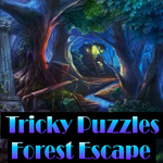 play Tricky Puzzles Forest Escape