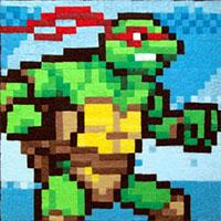 play Tmnt Advance