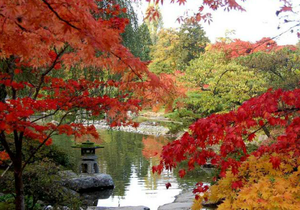 Crystal Hunter Zen Gardens game