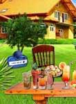 play Farm House Party