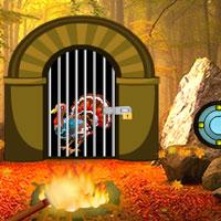play Turkey Waterfall Forest Escape