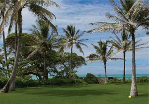 Escape Palm Beach game