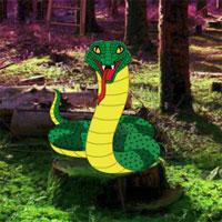 play Snake And Ladder Forest Escape