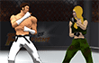 Art Of Free Fight game