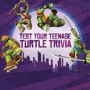 Teenage Mutant Ninja Turtles: Test Your Teenage Turtle Trivia Quiz game