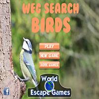 play Weg Search Birds