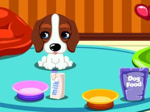 play Baby Doggy Day Care