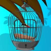 play Cuckoo Bird Rescue