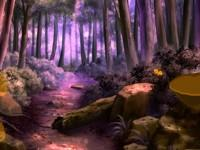 Soothing Forest Escape