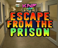 play Escape From The Prison