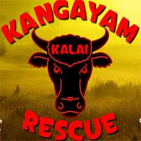 Kangayam Kalai Rescue game