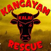 play Kangayam Kalai Rescue Escape