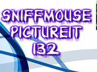 play Pictureit 132