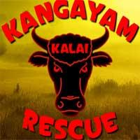Kangayam Kalai Rescue Escape game