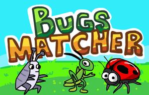 Bugs Matcher game