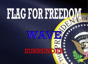 Flag For Freedom