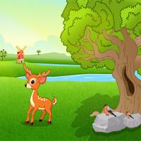 play Games2Jolly Feed The Baby Deer
