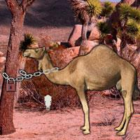 play Arabian Desert Escape