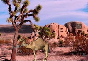 play Arabian Desert Escape