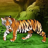 Panthera Fantasy Escape game