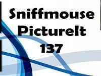 Pictureit 137 game
