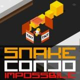 Snake Condo Impossible game