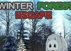 play Winter Forest Escape