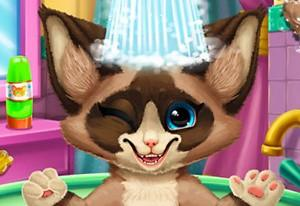 play Kitten Bath
