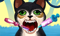 play Become An Animal Dentist