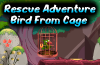 play Rescue Adventure Bird From Cage Escape
