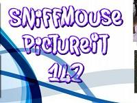 play Pictureit 142