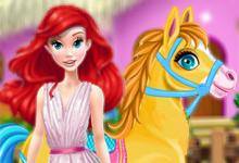 Pony Horse Caring game