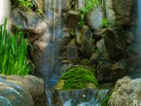 Escape Waterfalls game