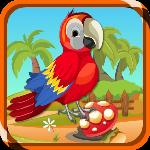 play Zoozoo Scarlet Bird Escape
