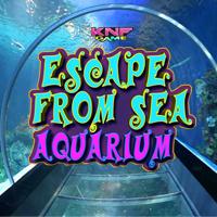 play Escape From Sea Aquarium