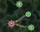 Tentacle Wars game