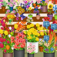 Flower-Shop-Check-Up game