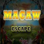 play 8B Macaw Escape