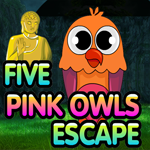 Five Pink Owls Escape game