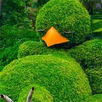 Green-Garden-Escape-Mirchigames game