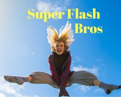 Super Flash Bros game