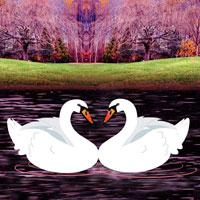 Escape Game Save The Swan game