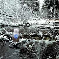 Winter Wonderland Forest Escape Escapefan game