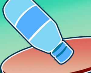Flip Water Bottle Online game